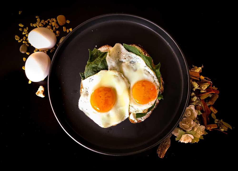 eier als proteinreiches lebensmittel
