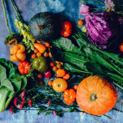 kürbis paprika tomaten und salat dekoriert